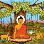 8 Weeks Calm Abiding Meditation Course